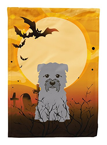 Caroline's Treasures BB4325CHF Halloween Glen of Imal Grey Canvas House Size Flag, Large, Multicolor for $<!--$31.27-->
