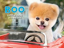 Boo: Little Dog in the Big City by [Lee, J.H., LeMaistre, Gretchen]