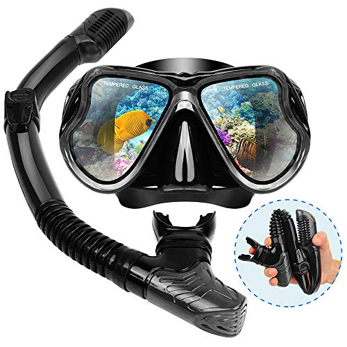 - Dry Snorkel Mask Set Snorkeling Gear - Foldable Dry Snorkel Set with Dry-wet Switchable Float Valve, Purge Valve Tube, Anti Fog 180 Panoramic Silicone No Leak Seal Mask for Adults and Youth