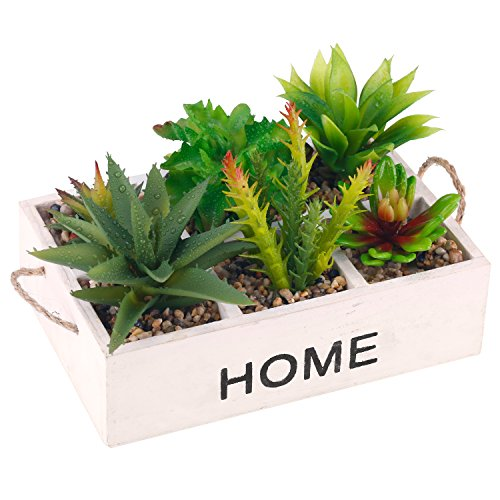 Potted Artificial Succulent Plants in Rustic Whitewashed Wooden 'HOME' Planter Box with Rope Handles