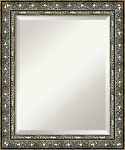 Amanti Art Framed Mirrors for Wall   Barcelona Champagne Mirror for Wall -