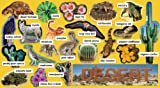 Scholastic Desert Plants & Animals Mini Bulletin Board (TF8076)