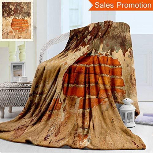 "- Unique Double Sides 3D Print Flannel Blanket Antique Decor Collection Old Historical Floral Mural Painting On A Wall Concrete Bric Cozy Plush Supersoft Blankets for Couch Bed, Throw Blanket 40"" x 60"""