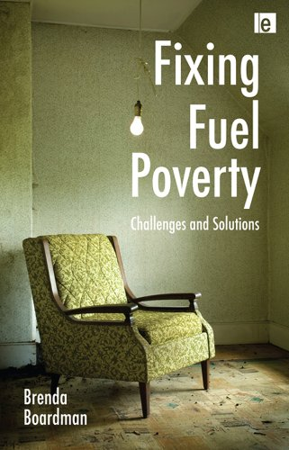 Fixing Fuel Poverty: Challenges and Solutions (Global Price Fixing)
