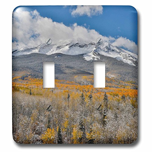 3dRose Danita Delimont - Forests - Autumn Aspens and snow on Keebler Pass, Rocky Mountains, Colorado - Light Switch Covers - double toggle switch ()