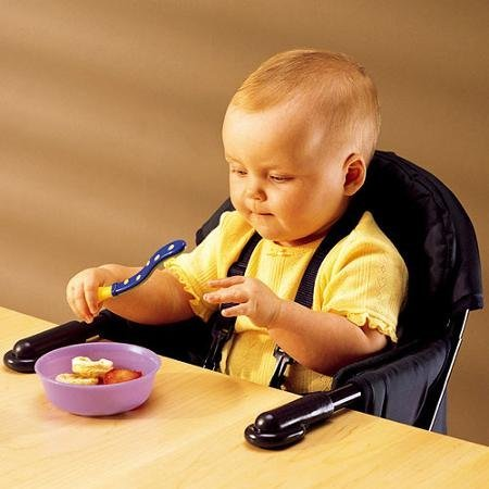 Regalo - Easy Diner Portable Hook On Chair Make Dining with Baby Fun and Comfortable for Everyone - Regal Double Diner