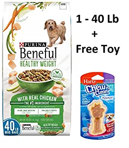 Purina Beneful Healthy Weight With Real Chicken (40 lb. - 1 Bag + Free Toy)