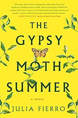 book cover of Gypsy Moth Summer