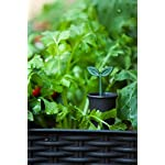 Keter Elevated Garden Bed 14 Dimensions: 44. 9 in. W x 19. 4 in. D x 29. 8 in. H Easy to read water gauge indicates when plants need additional moisture Drainage system that can be opened or closed for full control of watering