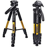 Tairoad T1-111 Tripod 55 Aluminum Lightweight Sturdy Camera Tripod Portable for Travel with 3-Way Swivel Pan Head for DSLR EOS Canon Nikon Sony Samsung Max Capacity 11lbs (Gold)