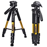 Tairoad T1-111 Tripod 55' Aluminum Lightweight Sturdy Camera Tripod Portable for Travel with 3-Way Swivel Pan Head for DSLR EOS Canon Nikon Sony Samsung Max Capacity 11lbs (Gold)