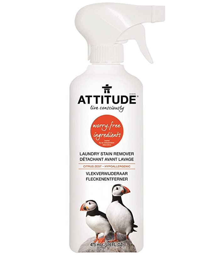 Attitude - Quitamanchas, 2 unidades (2 x 475 ml): Amazon.es: Salud ...
