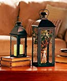 The Lakeside Collection Set of 2 Chicken Wire Lanterns