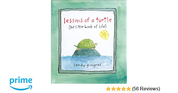 HAVE YOU HUGGED A TURTLE TODAY 5 inch round TURTLE STICKER Green 2 for $7.99