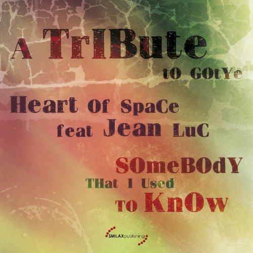 Somebody That I Used to Know: A Tribute to Gotye (feat. Jean - Gotye Mp3