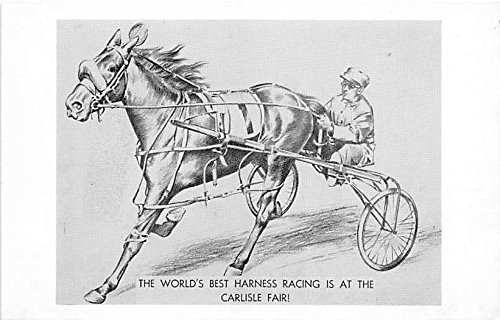 The World's Best Harness Racing is at the Carlisle Fair Pittsfield, Massachusetts, MA, USA Old Vintage Horse Racing Postcard Post Card