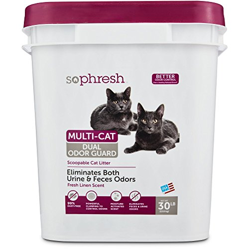 So Phresh Dual Odor Guard Scoopable Cat Litter, 30 lbs.