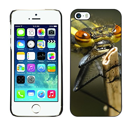 Premio Sottile Slim Cassa Custodia Case Cover Shell // F00008103 insecte // Apple iPhone 5 5S 5G