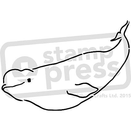 amazon com a5 beluga whale wall stencil template ws00001462