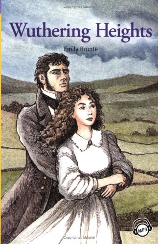 an overview of the plot and theme in emily brontes wuthering heights Wuthering heights: summary, characters, analysis the novel wuthering heights has a very complex storyline and the characters involved are also quite intricate the story takes place in northern england in an isolated, rural area.