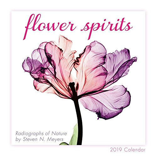 Flower Spirits 2019 Mini Calendar