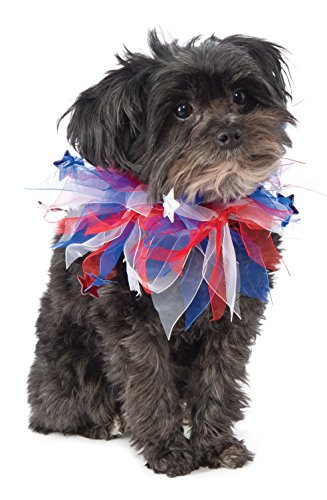 [Rubie's Patriotic Fancy Collar Dog Costume] (Pomeranian Costume)