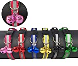 Tafeiya 6x Reflective Design Adjustable Cat Collars More Safety Quick Release Safety Buckle with Double Bells(6 Red, Pink, Yellow, Black, Blue and Green)