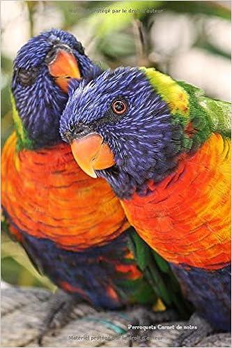 Perroquets Carnet notes: