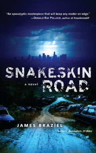 Snakeskin Road: A Novel cover