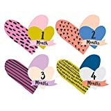 Lucy Darling Monthly Baby Stickers - Baby Girl - Little Heartbreaker (Cut out) - Months 1-12