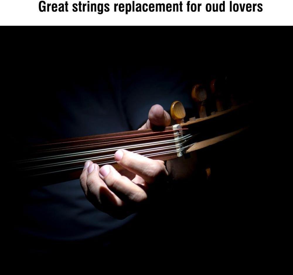 Dilwe Cordes dOud Ensemble de Cordes Oud Accessoire dinstrument /à Cordes pour Oud