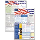 Advantus - State/Federal Labor Law Legally Required Multi-Colored Poster 24 X 36 ''Product Category: Forms Recordkeeping & Reference Materials/Reference Materials''