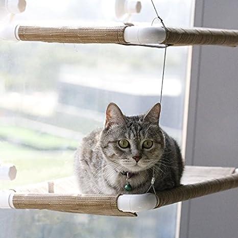 Hamaca para gatos Litera para gatos - Cama para ventanas con ventosa- Area de descanso para gatos: Amazon.es: Productos para mascotas