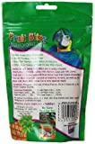 Fruit Bites Jumbo Jungle Jems Pet Bird Treat, 6-Ounce