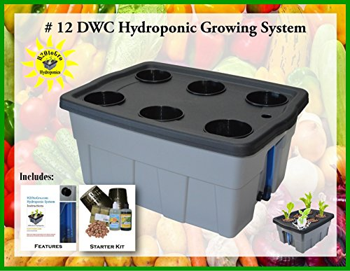 Hydroponic Complete Growing System DWC Kit #12-6 H2OtoGro by H2OToGro
