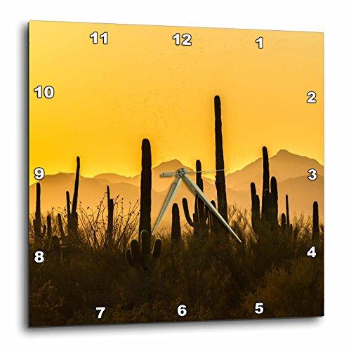 3dRose Danita Delimont - Deserts - USA, Arizona, Saguaro National Park. Sonoran Desert at sunset. - 15x15 Wall Clock (dpp_278438_3) Sonoran Desert Saguaro National Park
