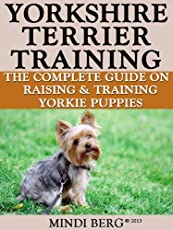 Different kinds of yorkshire terrier