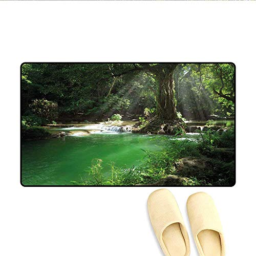 Doormat Tropical Forest Foliage with Cascade Rainforest Relaxing National Park Image Bath Mat for Tub Bathroom Mat Hunter Green Brown 20x32