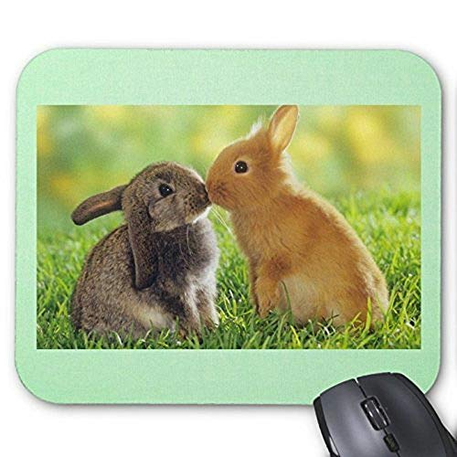 Gaming Mouse pad mousemat Lovely Rabbit Mousepad Series Bunnies Kissing Mouse Pad Bunny Rabbit Mouse Pad Rectangle Mousepads ()