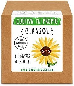 Garden Pocket - Kit Cultivo Girasol: Amazon.es: Jardín