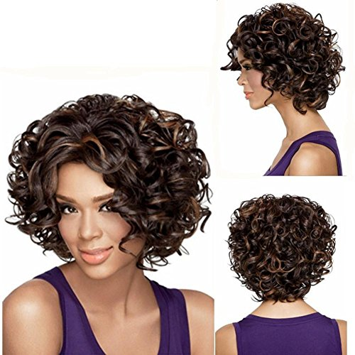 2017 Trendy Afro Short Bobo Wigs for Black (Afro Puff Wig 80s Costumes)