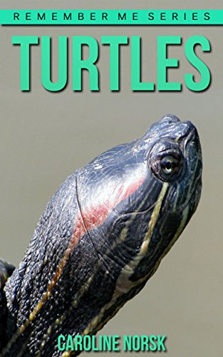 Turtles: Amazing Photos & Fun Facts Book About Turtles For Kids