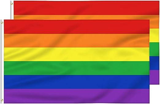 FLAGBURG Bandera Lésbica del Orgullo Gay Duradero de Poliéster, Colores Vivos, Doble Costura para Desfile al Aire ...