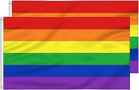 FLAGBURG Bandera Lésbica del Orgullo Gay Duradero de Poliéster, Colores Vivos, Doble Costura para Desfile al Aire Libre (Rainbow 3x5FT- 2 Pack Print): Amazon.es: Jardín