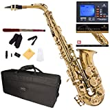 Mendini by Cecilio Eb Alto Sax w/Tuner, Case, Mouthpiece, 10 Reeds, Pocketbook and 1 Year Warranty (Lacquered Gold)
