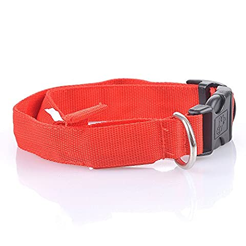 LED Lighted Dog and Cat Collar (Red, Small) - Lighted Cat Collars