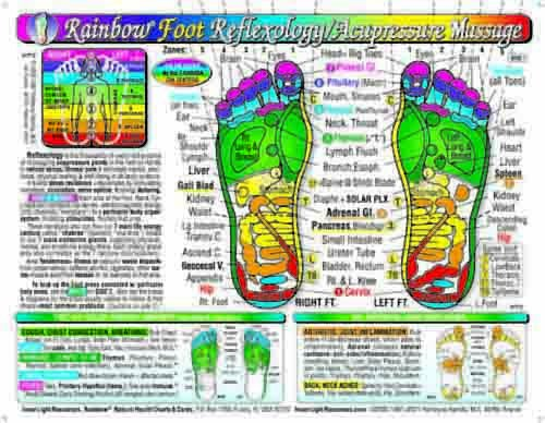 Rainbow FOOT Reflexology/ Acupressure Massage Chart, by Inner Light Resources ()