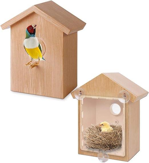 Meetforyou Alimentador de Ventanas para pájaros Caja de observación Observador de Aves Casa de Aves Caja de nidos de Aves Nido de Aves Silvestres con Ventosa Jaula de nidos de Aves: Amazon.es: