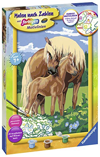 Ravensburger Paint by Number 28911 Lovely Horses