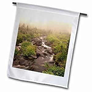 Danita Delimont - Creeks - WA, Mt Rainier NP, Paradise Creek Monkeyflowers - US48 JWI1382 - Jamie and Judy Wild - 18 x 27 inch Garden Flag (fl_95987_2)